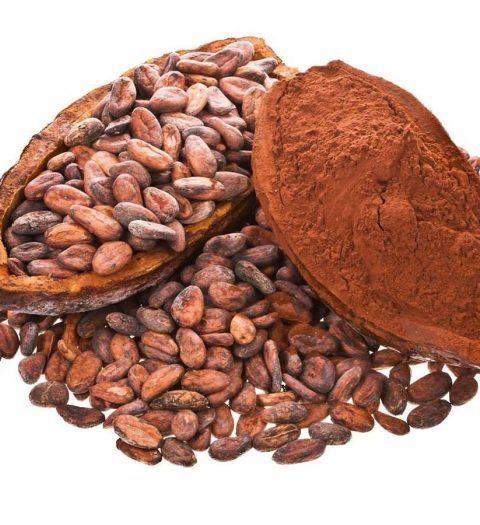 Какао-бобы: от зернышка к шоколадной плитке